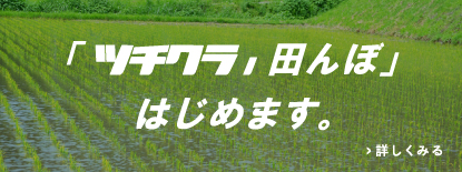 ツチクラ丿田んぼ